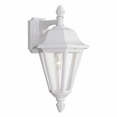 Classic 1-Light Outdoor Wall Lantern Finish: White