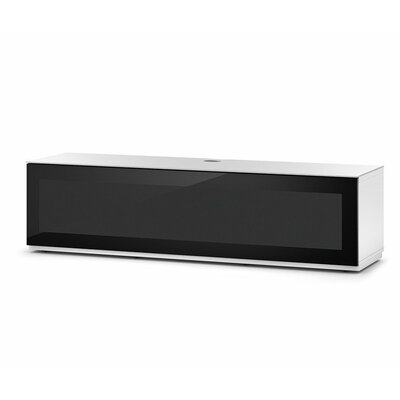 Dillen Studio 65 TV Stand Color: Black/White