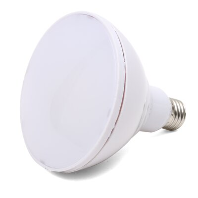 15W E26 Medium LED Light Bulb Bulb Temperature: 2700K