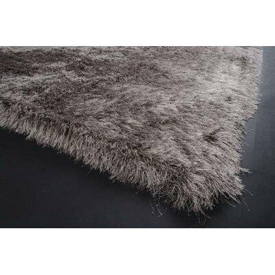 Alayna Gray Area Rug Rug Size: 24 x 36