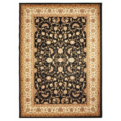 Ahearn Black/Brown Rug Rug Size: 8 x 10
