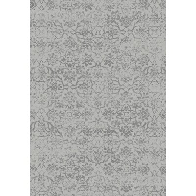 Wiedeman Light Gray Area Rug Rug Size: 5'3