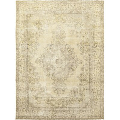 One-of-a-Kind Baldenegro Hand-Knotted Wool Ivory Area Rug