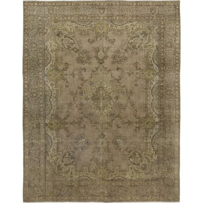 One-of-a-Kind Assad Hand-Knotted Wool Brown Area Rug