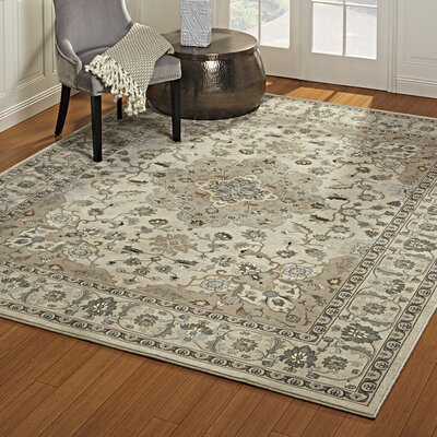 John Ivory Area Rug Rug Size: Rectangle 53 x 75