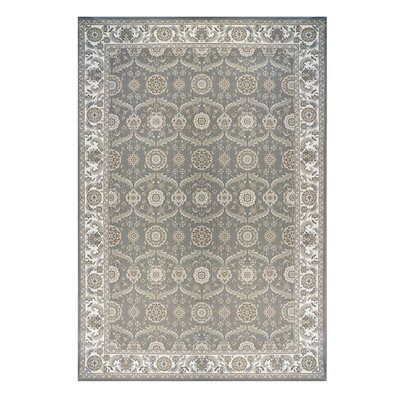 Majestic Liverpool Gray Area Rug Rug Size: 66 x 96