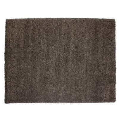 Ultimate Espresso Brown Area Rug Rug Size: 53 x 75