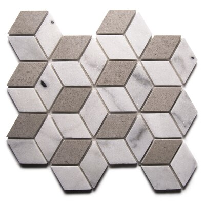 Rhombus Modern Mix 2 x 3 Marble Mosaic Tile White/Dark Gray