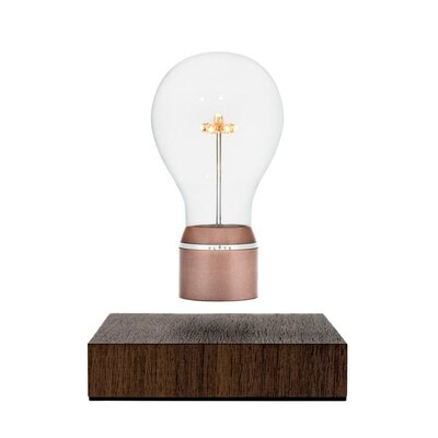 Copper Light Bulb