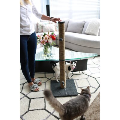 Sea Grass Scratching Post Size: 41.25 H x 16 W x 16 D, Color: Gray Fleece