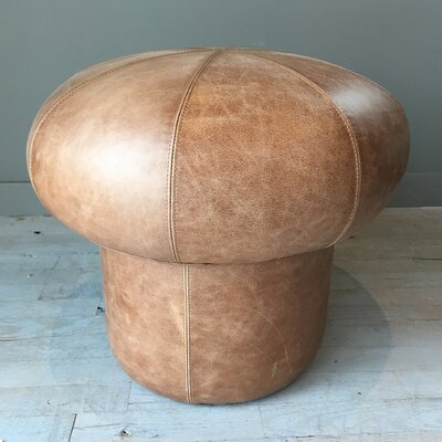 Mushroom Leather Ottoman Upholstery: Hair-on-Hide Brown & White