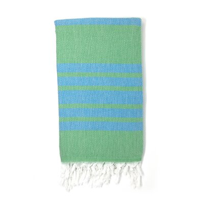 Luxury Pestemal Fouta Turkish Beach Towel Color: Green/Blue
