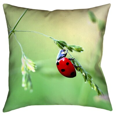Duriel Square Outdoor Throw Pillow Size: 20 x 20