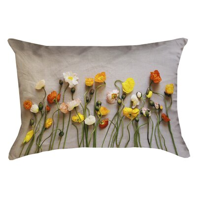 Tuyen Dried Flowers Double Sided Print Rectangular Pillow Cover with Down Alternative Product Type: Pillow