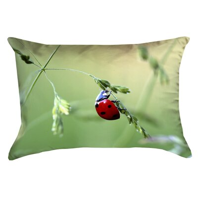 Duriel Double Sided Print 100% Cotton Lumbar Pillow Product Type: Pillow Cover
