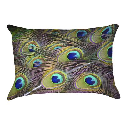 Helsel Peacock Feathers Outdoor Lumbar Pillow