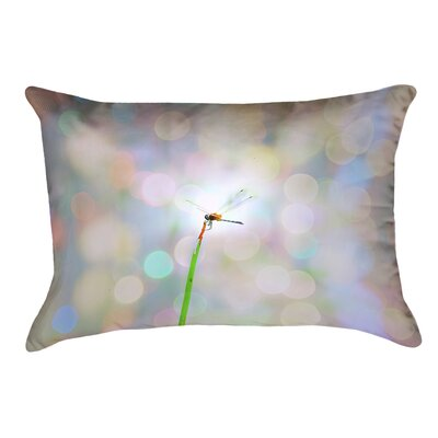 Gemmill Dragonfly and Lights Outdoor Lumbar Pillow