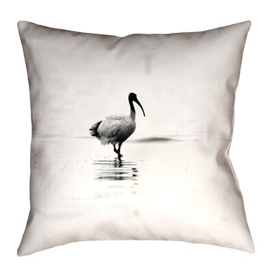 Castillo Ibis Double Sided Throw Pillow Size: 18 x 18, Type: Pillow Cover, Material: Suede