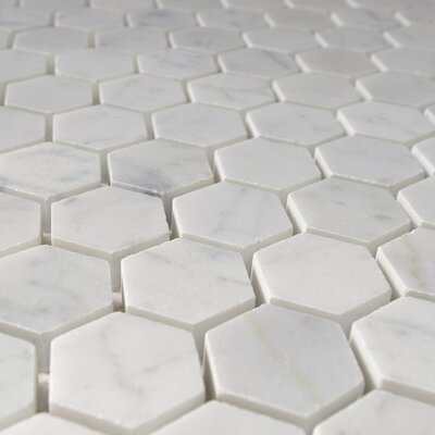 "Tyshawn Hexagon 1"" x 1"" Marble Mosaic Tile in White CWMM1HEX"