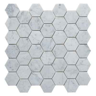 Carrara Hexagon 2 x 2 Marble Mosaic Tile in White