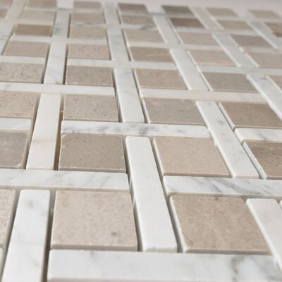 Apartment Miami Random Sized Marble Mosaic Tile in White/Gray