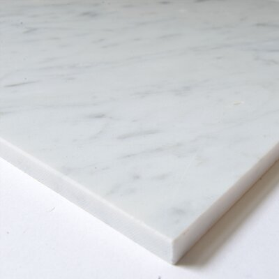 Carrara 12 x 12 Marble Field Tile in White