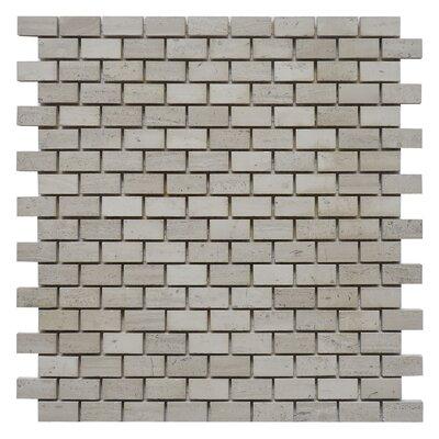 Brick 0.62 x 1.25 Marble Mosaic Tile in White Oak