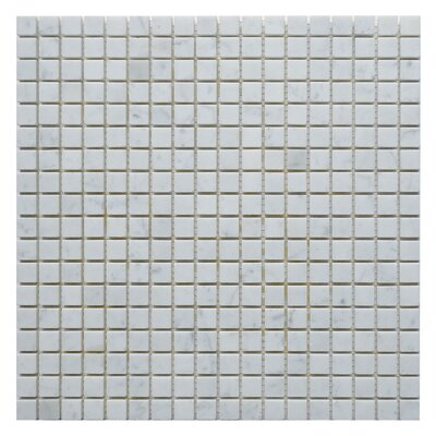 Carrara 0.63 x 0.623 Marble Mosaic Tile in White