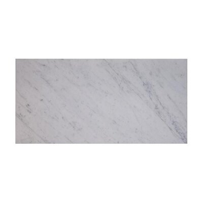 Carrara 12 x 24 Marble Field Tile in White (Set of 3)