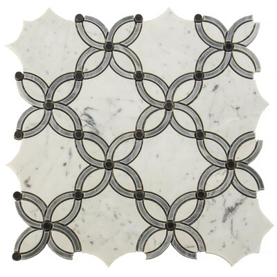 Water Jet Passion Random Sized Marble Mosaic Tile in White/Gray