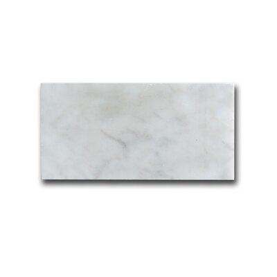 Carrara 3 x 6 Marble Field Tile in White
