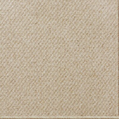 Cannon Tufted Wool Beige Indoor Area Rug Rug Size: 5 x 8