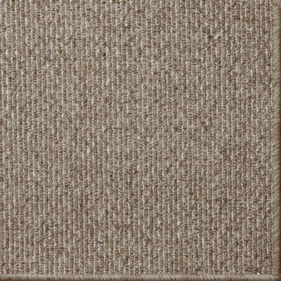 Cannon Brown Area Rug Rug Size: 9 x 12