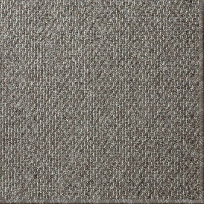 Cannon Gray Area Rug Rug Size: 9 x 12
