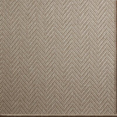 Patel Brown Area Rug Rug Size: 6 x 9