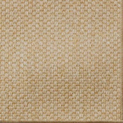 Paray Light Ash Area Rug Rug Size: 5 x 8