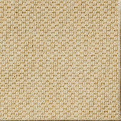 Paray Honey Area Rug Rug Size: 8 x 10