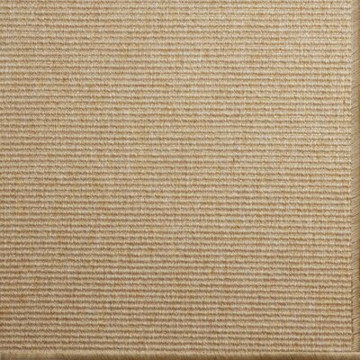 Paquerette Light Ash Area Rug Rug Size: 9' x 12'