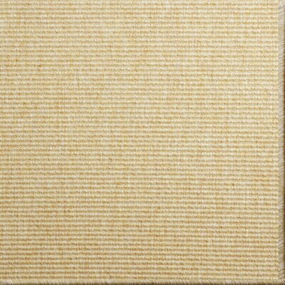 Paquerette Honey Area Rug Rug Size: 6 x 9