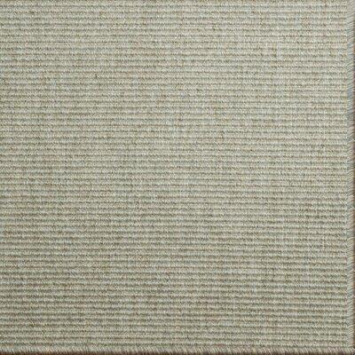 Paquerette Eucalyptus Area Rug Rug Size: 9 x 12
