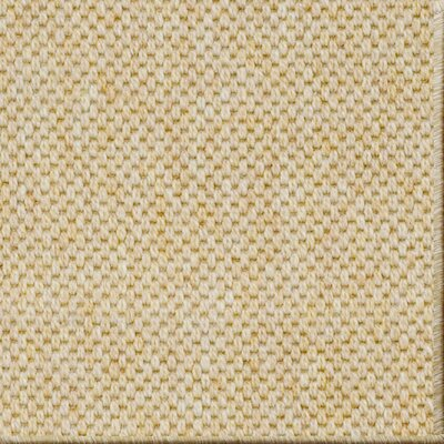 Owen Honey Area Rug Rug Size: 6 x 9