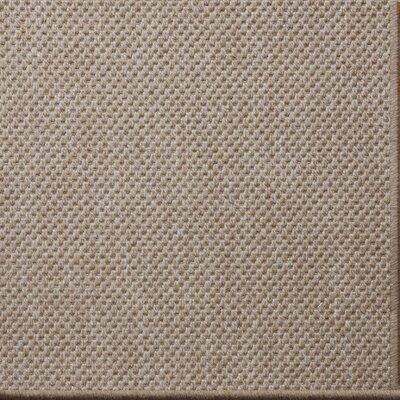 Owen Brown Area Rug Rug Size: 6 x 9