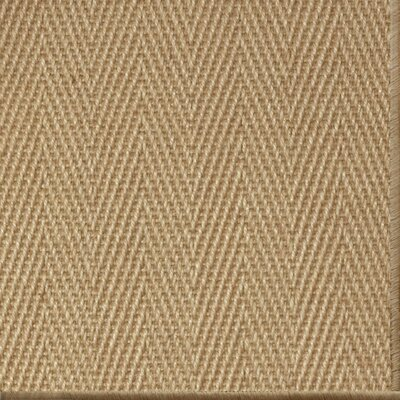 Parisot Natural Area Rug Rug Size: 10 x 14