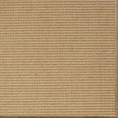 Parisot Natural Area Rug Rug Size: 8 x 10