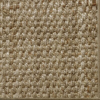 Parisot Gray Area Rug Rug Size: 8 x 10