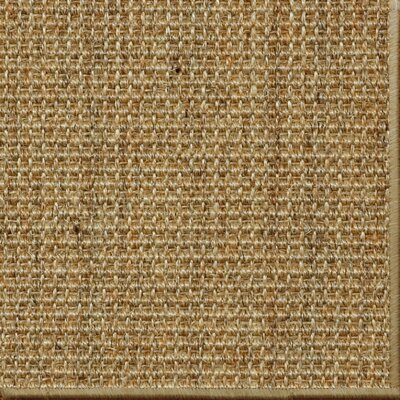 Paton Spice Area Rug Rug Size: 9 x 12