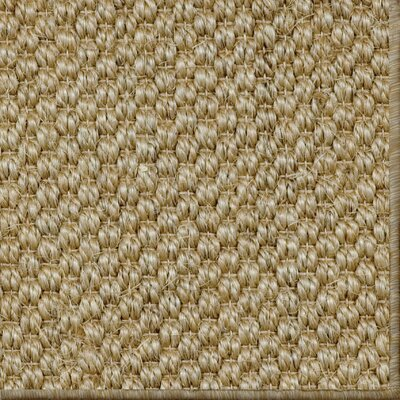Parisot Natural Area Rug Rug Size: 6 x 9