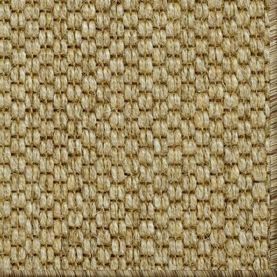 Parisot Brown Area Rug Rug Size: 9 x 12