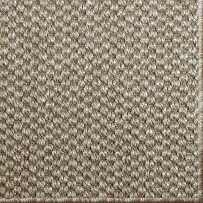 Parisot Taupe Area Rug Rug Size: 9' x 12'