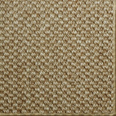 Parisot Copper Area Rug Rug Size: 6 x 9